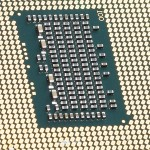 עכברים מעבדת תיקון מחשבים באשקלון